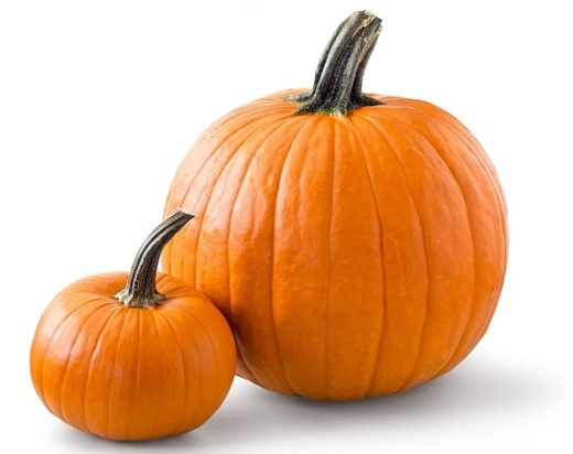 Two pumpkins photographed against white background. Picture saved with clipping path.